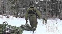 Лесные инспекторы провели более 42 тысяч рейдов по пресечению рубок новогодних елок